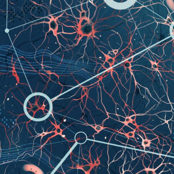 Quantum generalisation of feedforward neural networks